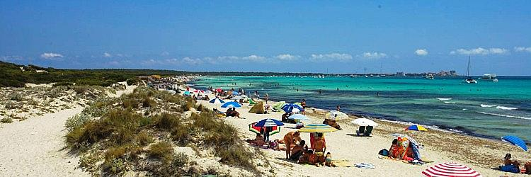 Playa Es Trenc Strand Playa Es Trenc Mallorca Mallorca